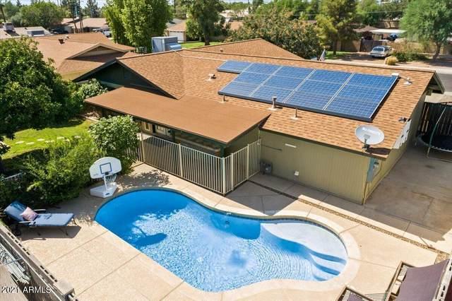 315 W Century Avenue, Gilbert, AZ 85233 (MLS #6266507) :: Yost Realty Group at RE/MAX Casa Grande