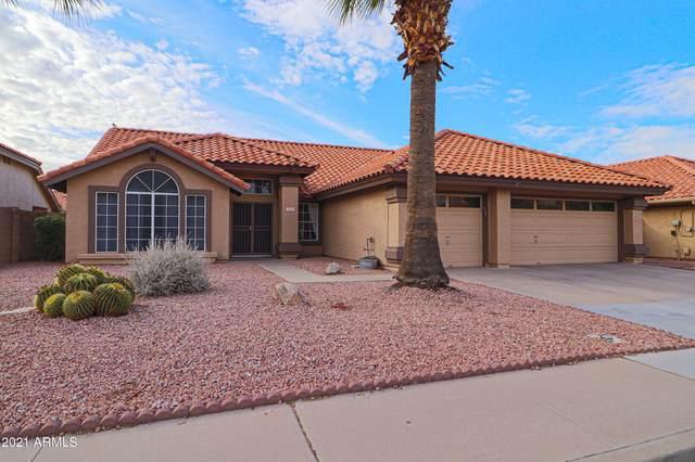 1551 W Corona Drive, Chandler, AZ 85224 (MLS #6266524) :: Yost Realty Group at RE/MAX Casa Grande
