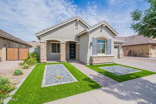 4188 E Dwayne Street, Gilbert, AZ 85295 (MLS #6266571) :: Keller Williams Realty Phoenix