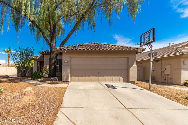 26265 N 43RD Place, Phoenix, AZ 85050 (MLS #6266625) :: The Newman Team