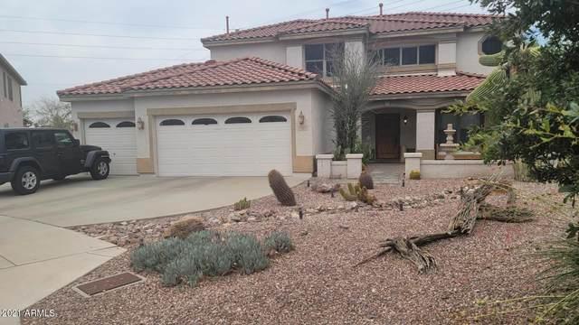 3422 W Lucia Drive, Phoenix, AZ 85083 (MLS #6266729) :: Yost Realty Group at RE/MAX Casa Grande