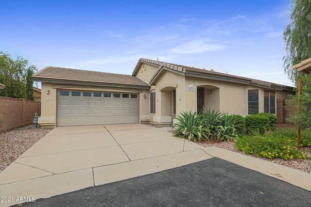 5237 E Ingram Street, Mesa, AZ 85205 (MLS #6266740) :: Yost Realty Group at RE/MAX Casa Grande