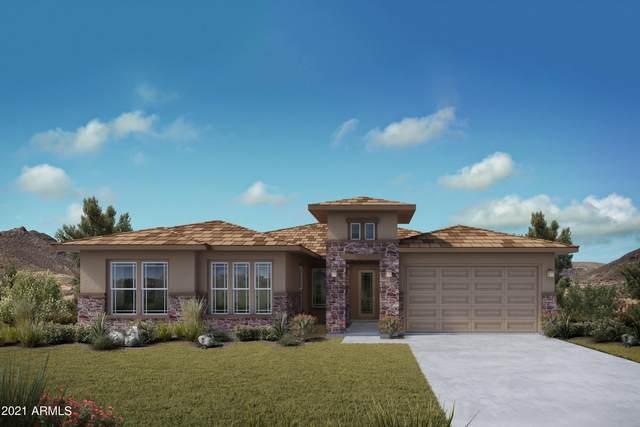 11714 W Luxton Lane, Avondale, AZ 85323 (MLS #6266752) :: Elite Home Advisors