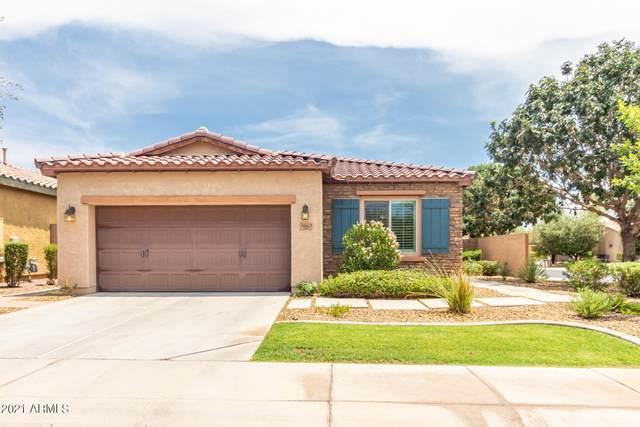 3663 S Washington Street, Chandler, AZ 85286 (MLS #6266764) :: Yost Realty Group at RE/MAX Casa Grande