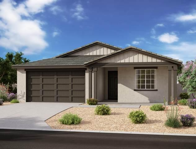 5548 W Western Star Boulevard, Laveen, AZ 85339 (MLS #6266802) :: Dave Fernandez Team | HomeSmart