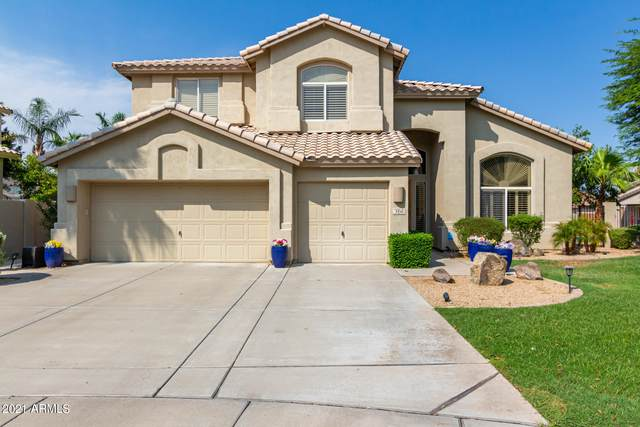 3350 S Beverly Place, Chandler, AZ 85248 (MLS #6266804) :: CANAM Realty Group