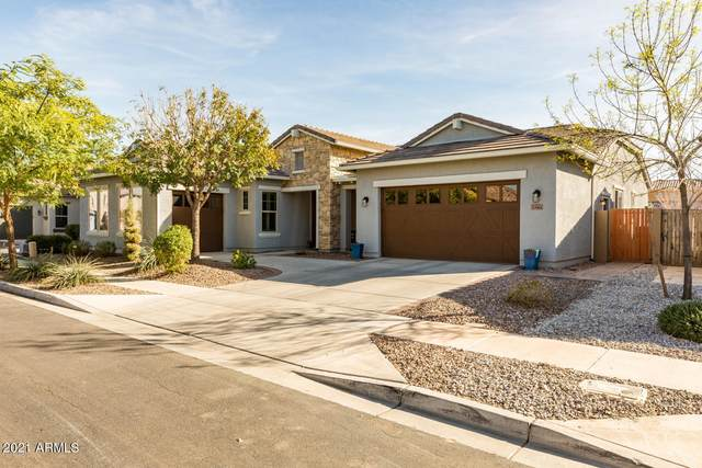 3541 E Loma Vista Street, Gilbert, AZ 85295 (MLS #6266805) :: Executive Realty Advisors