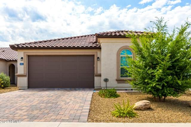 10051 W Robin Lane, Peoria, AZ 85383 (MLS #6266812) :: Yost Realty Group at RE/MAX Casa Grande