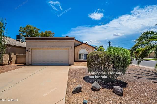3983 W Cindy Street, Chandler, AZ 85226 (MLS #6266898) :: Yost Realty Group at RE/MAX Casa Grande