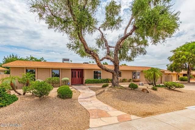 15009 N Hana Maui Drive, Phoenix, AZ 85022 (MLS #6266899) :: Yost Realty Group at RE/MAX Casa Grande