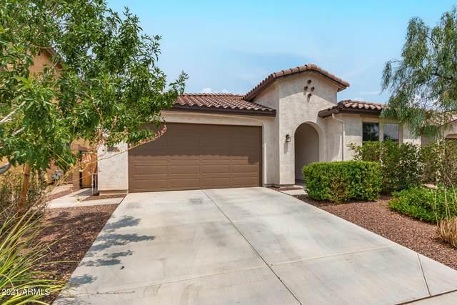 22081 N 97TH Drive, Peoria, AZ 85383 (MLS #6266902) :: The Laughton Team