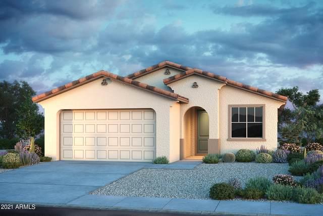 31843 N 123RD Lane, Peoria, AZ 85383 (MLS #6266909) :: Howe Realty