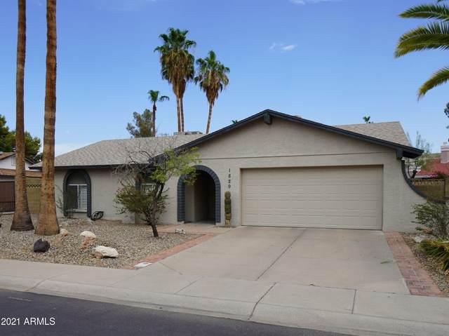 1829 N Tamarisk Street, Chandler, AZ 85224 (MLS #6266922) :: Yost Realty Group at RE/MAX Casa Grande