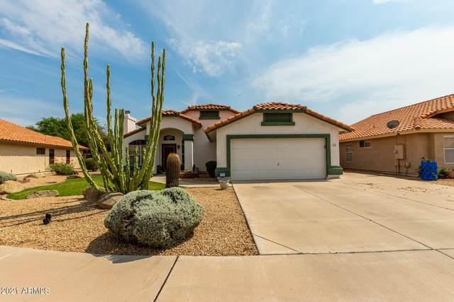 4345 E Baywood Avenue, Mesa, AZ 85206 (MLS #6266947) :: Yost Realty Group at RE/MAX Casa Grande