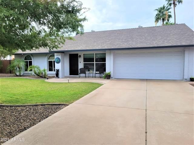 6319 W Cholla Street, Glendale, AZ 85304 (MLS #6267045) :: Yost Realty Group at RE/MAX Casa Grande