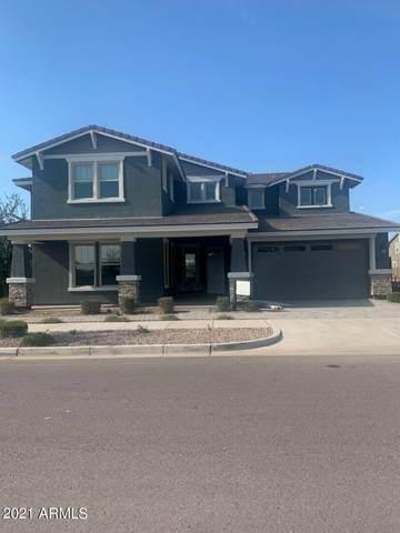 10320 E Trillium Avenue, Mesa, AZ 85212 (MLS #6267096) :: Yost Realty Group at RE/MAX Casa Grande