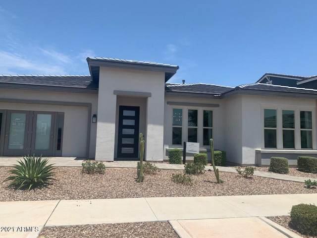 10312 E Trillium Avenue, Mesa, AZ 85212 (MLS #6267100) :: Yost Realty Group at RE/MAX Casa Grande