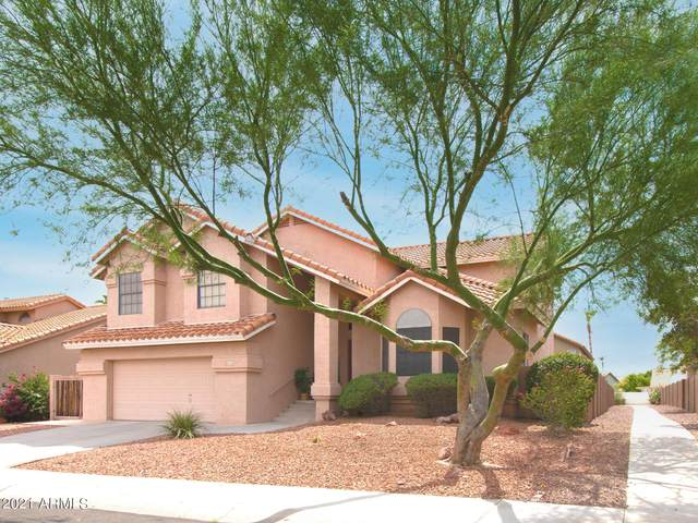 16632 S 35TH Street, Phoenix, AZ 85048 (MLS #6267126) :: Selling AZ Homes Team