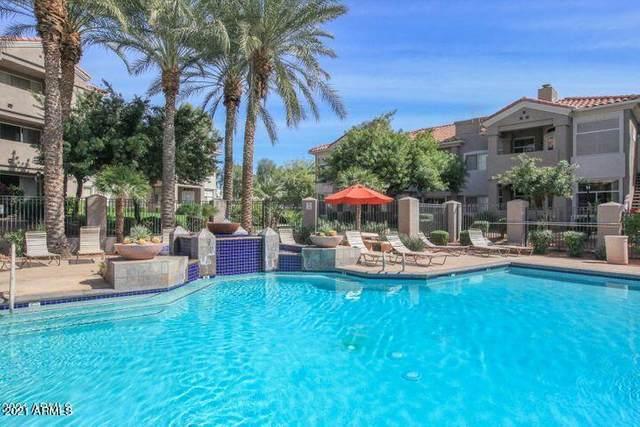 3830 E Lakewood Parkway E #3175, Phoenix, AZ 85048 (MLS #6267134) :: Keller Williams Realty Phoenix