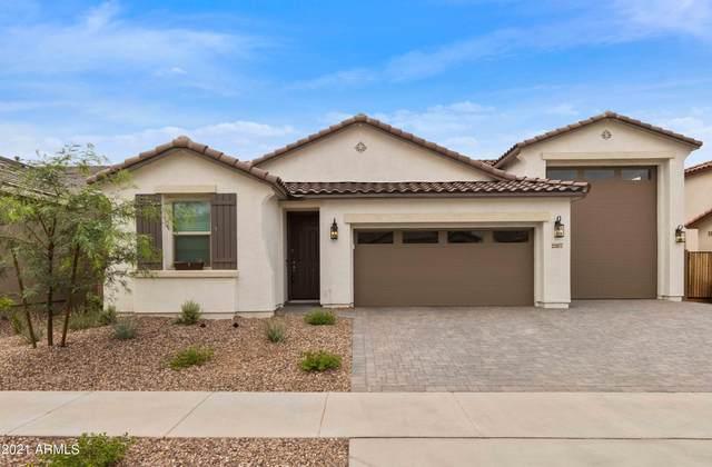 22877 E Domingo Road, Queen Creek, AZ 85142 (MLS #6267154) :: Yost Realty Group at RE/MAX Casa Grande