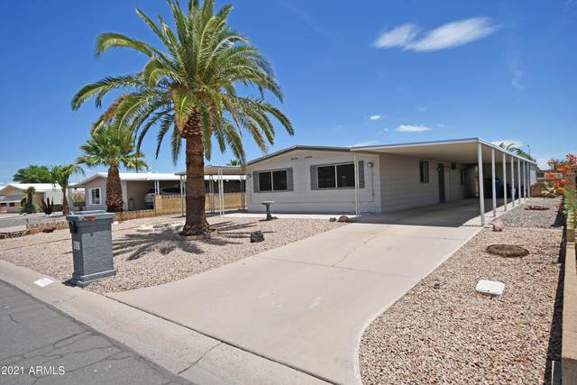 9421 E Sun Lakes Boulevard S, Sun Lakes, AZ 85248 (MLS #6267183) :: Dave Fernandez Team | HomeSmart