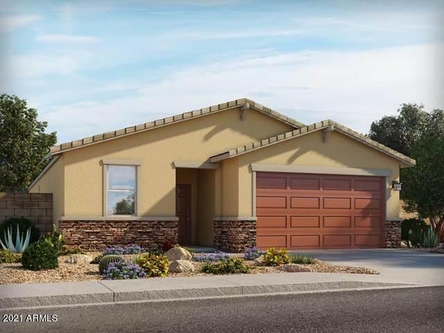 4548 W Greenleaf Drive, San Tan Valley, AZ 85142 (MLS #6267226) :: Executive Realty Advisors
