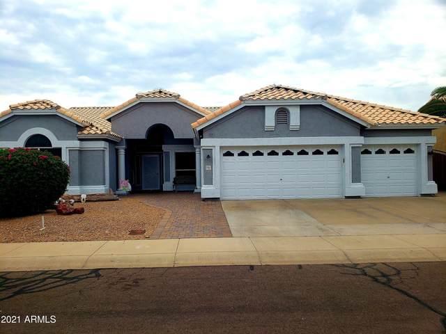 25031 N 50TH Avenue, Phoenix, AZ 85083 (MLS #6267237) :: Yost Realty Group at RE/MAX Casa Grande