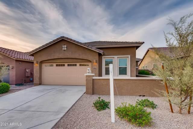 4016 E Mark Lane, Cave Creek, AZ 85331 (MLS #6267248) :: The Newman Team