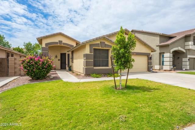 9027 W Clara Lane, Peoria, AZ 85382 (MLS #6267252) :: Yost Realty Group at RE/MAX Casa Grande