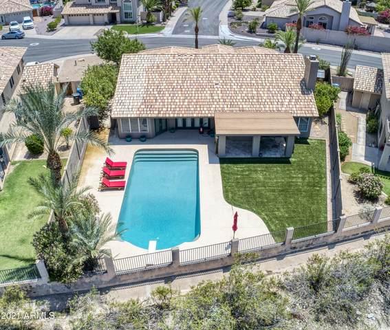 14428 S 24TH Place, Phoenix, AZ 85048 (MLS #6267263) :: Keller Williams Realty Phoenix