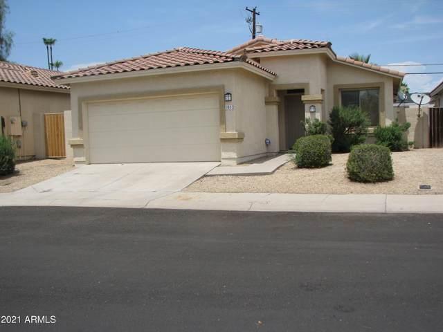 1012 E Susan Lane N, Tempe, AZ 85281 (MLS #6267281) :: Balboa Realty