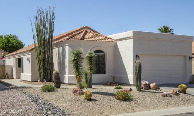 12134 N Finch Drive, Fountain Hills, AZ 85268 (MLS #6267308) :: Yost Realty Group at RE/MAX Casa Grande
