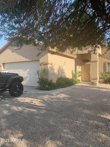 11851 W Windsor Avenue, Avondale, AZ 85392 (MLS #6267316) :: ASAP Realty