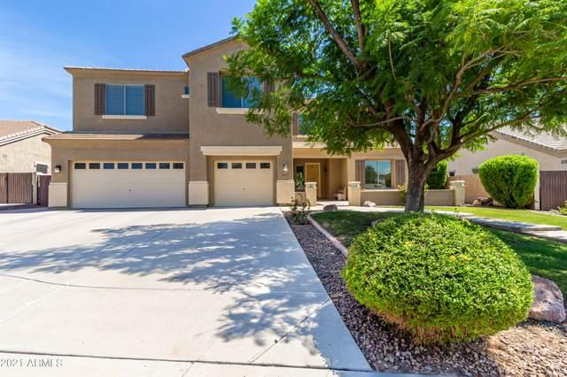 3151 E Hampton Lane, Gilbert, AZ 85295 (MLS #6267338) :: Keller Williams Realty Phoenix