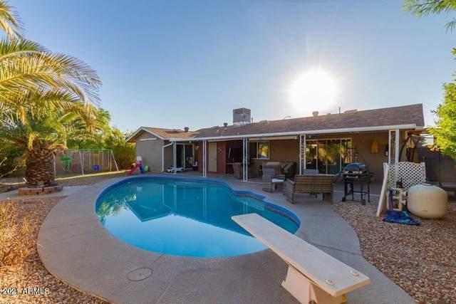 15241 N 55TH Avenue, Glendale, AZ 85306 (MLS #6267360) :: Howe Realty