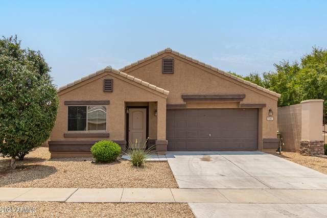 7263 W Cactus Wren Drive, Glendale, AZ 85303 (MLS #6267393) :: Dave Fernandez Team | HomeSmart