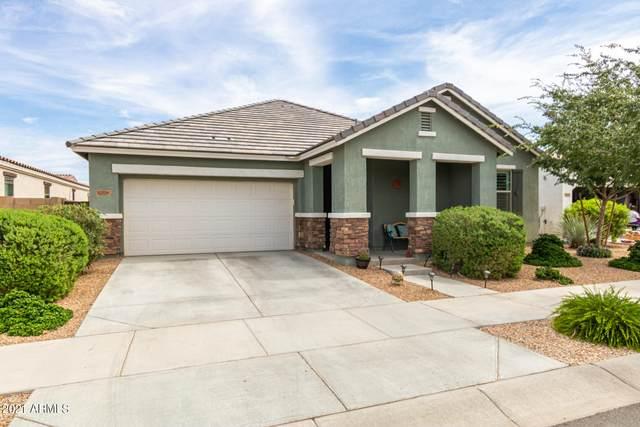 22656 E Via Del Verde, Queen Creek, AZ 85142 (#6267448) :: The Josh Berkley Team