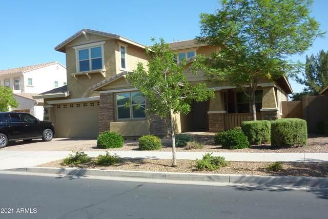 22060 E Rosa Road, Queen Creek, AZ 85142 (MLS #6267469) :: Yost Realty Group at RE/MAX Casa Grande