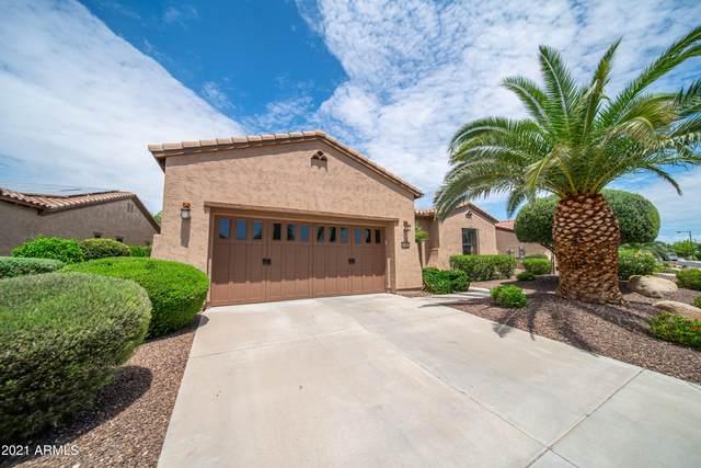 27662 N 129TH Lane, Peoria, AZ 85383 (MLS #6267476) :: Long Realty West Valley
