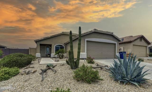3663 W Santa Cruz Avenue, Queen Creek, AZ 85142 (MLS #6267500) :: Yost Realty Group at RE/MAX Casa Grande