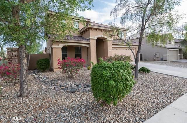 2317 W Steed Ridge, Phoenix, AZ 85085 (MLS #6267533) :: Conway Real Estate