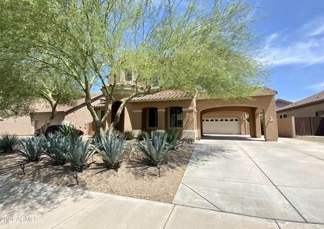 8332 W Rosewood Lane, Peoria, AZ 85383 (MLS #6267538) :: Yost Realty Group at RE/MAX Casa Grande