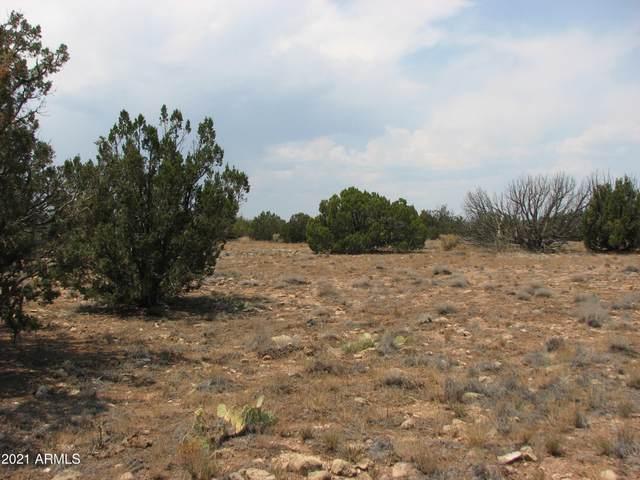 Sec 17 Chevelon Retreat, T14, R17e, Heber, AZ 85928 (MLS #6267550) :: The Copa Team | The Maricopa Real Estate Company