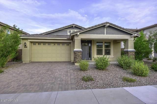 31639 N 132nd Avenue, Peoria, AZ 85383 (MLS #6267553) :: Executive Realty Advisors
