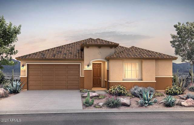 21210 N 260TH Lane, Buckeye, AZ 85396 (MLS #6267554) :: Yost Realty Group at RE/MAX Casa Grande