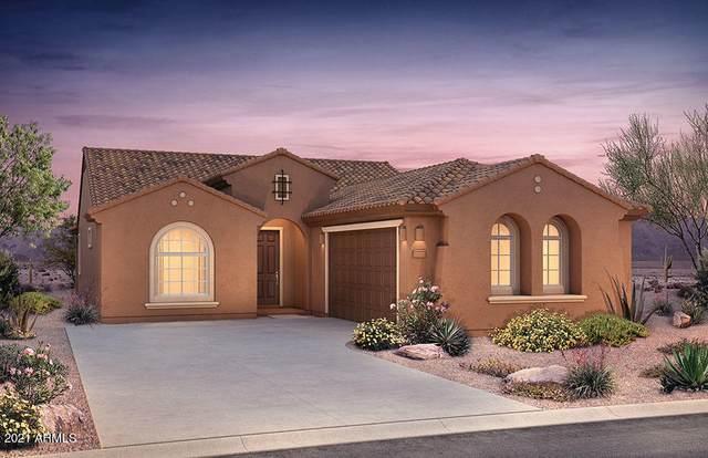 21228 N 260TH Lane, Buckeye, AZ 85396 (MLS #6267560) :: Yost Realty Group at RE/MAX Casa Grande