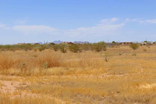 31808 W 234 Drive, Wittmann, AZ 85361 (MLS #6267633) :: Yost Realty Group at RE/MAX Casa Grande