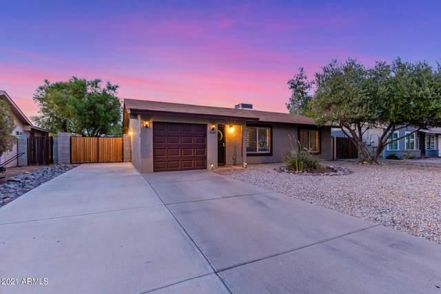 3668 W Tyson Street, Chandler, AZ 85226 (MLS #6267641) :: Yost Realty Group at RE/MAX Casa Grande