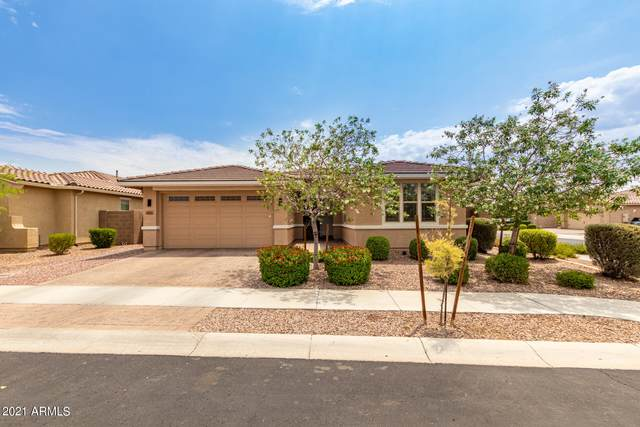 8659 N 89TH Lane, Peoria, AZ 85345 (MLS #6267642) :: The Laughton Team