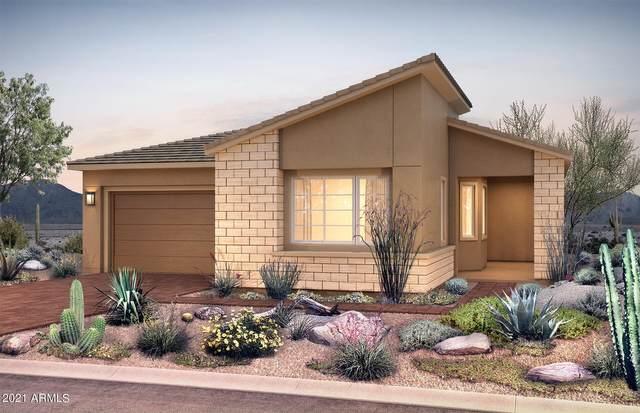 2847 E Los Gatos Drive, Phoenix, AZ 85050 (MLS #6267665) :: Yost Realty Group at RE/MAX Casa Grande